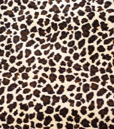 Leopard Skin  Stock Photo - 24430280