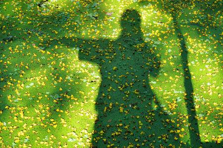 shadow: shadow  Stock Photo