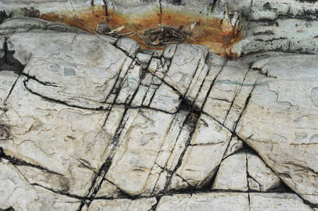 dark slate gray: surface of stone