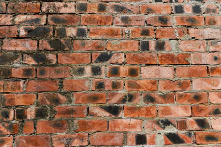 laterite: laterite wall,laterite texture Stock Photo