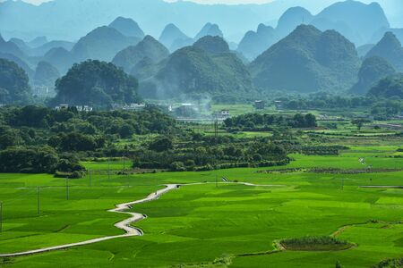 Rice terras in Guilin China Stockfoto