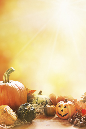 A l'automne rustique encore la vie avec des citrouilles, un petit Jack O'Lantern et feuilles d'or sur une surface en bois. La lumière du soleil venant de derrière.