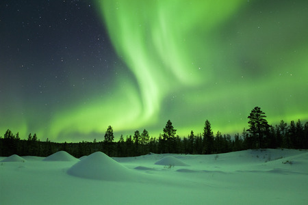 and in winter: Spectacular aurora borealis northern lights over a snowy winter landscape in Finnish Lapland.