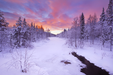 snow forest: A frozen river in a wintry landscape. Photographed near Levi in Finnish Lapland at sunrise.