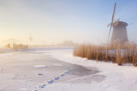 noord: Traditional Dutch windmills on a beautiful frosty and foggy morning.