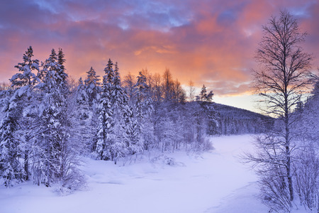 A frozen river in a wintry landscape. Photographed near Levi in Finnish Lapland at sunrise. Reklamní fotografie - 43583283