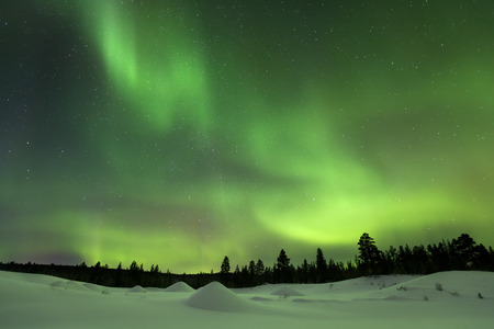 lapland: Spectacular aurora borealis northern lights over a snowy winter landscape in Finnish Lapland.