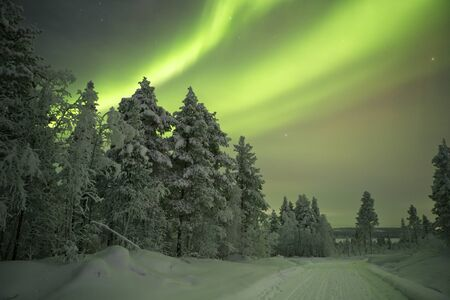 Spectacular aurora borealis northern lights over a track through winter landscape in Finnish Lapland. Reklamní fotografie - 43582928