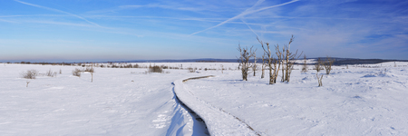 venn: A track through the frozen landscape of the Hautes Fagnes Hoge Venen, Hohes Venn, High Fens in the east of Belgium. Stock Photo