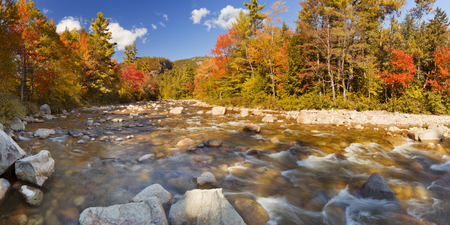 swift: Multi-coloured fall foliage along a river. Photographed at the Swift River, White Mountain National Forest in New Hampshire, USA.