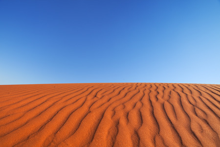 Detail of ripples in a red sand dune on a clear day. Photographed in the Northern Territory in Australia.