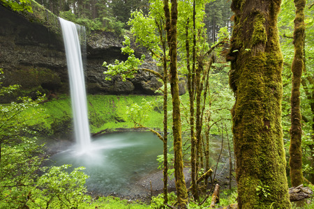 The South Falls in the Silver Falls State Park, Oregon, USA. Stock Photo