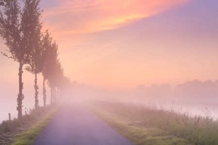 A foggy sunrise in typical polder landscape in the Beemster in The Netherlands.