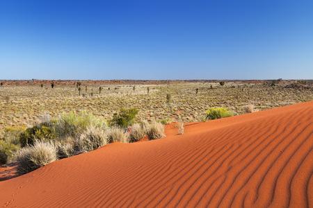 붉은 모래 언덕 맑은 날에에서 물결. 호주 노던 테리토리에서 촬영.