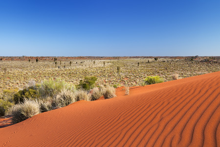 Ripples in a red sand dune on a clear day. Photographed in the Northern Territory in Australia.