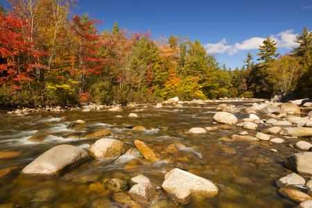 강을 따라 멀티 단풍. 뉴 햄프셔, 미국에서 스위프트 강, 화이트 마운틴 국립 산림에서 촬영.