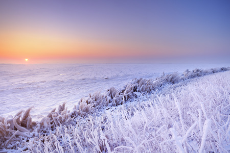 Sunrise over a frozen lake on a record-breaking cold morning in The Netherlands.