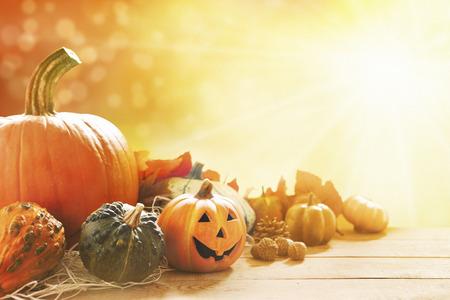 calabazas de halloween: Un otoño rústico todavía vida con las calabazas, un pequeño Jack O'Lantern y hojas de oro sobre una superficie de madera. La luz del sol brillante que viene de atrás.