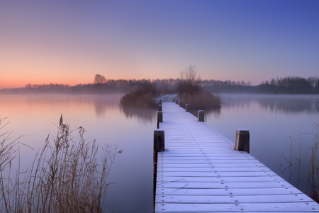 quiet scenery: A quiet lake in The Netherlands with a boardwalk on an early morning.