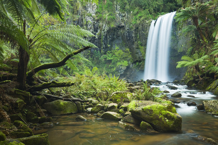 Waterfall in a lush rainforest. Photographed at the Hopetoun Falls in the Great Otway National Park in Victoria, Australia. 免版税图像 - 44295118