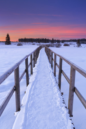 arden: A boardwalk through the frozen landscape of the Hautes Fagnes Hautes Fagnes, Hohes Venn, High Fens in the east of Belgium. Photographed at sunrise on a bitterly cold day in winter. Stock Photo