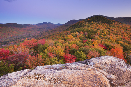 national forests: Endless forests with fall foliage in the White Mountain National Forest, New Hampshire, USA. Photographed from North Sugarloaf at dusk. Stock Photo