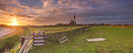 The church of Den Hoorn on the island of Texel in The Netherlands at sunrise. A field with sheep and little lambs in the front.