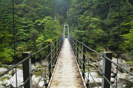 islands: A suspension bridge crossing a river in lush rainforest on the southern island of Yakushima, Japan.
