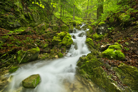 A waterfall in a lush gorge in Slovensky Raj in Slovakia.