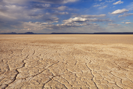 cracked: Cracked earth in the Alvord Playa, a dry lakebed in the Alvord Desert in southeastern Oregon, USA.