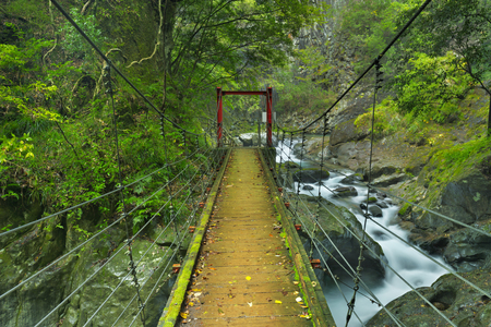 stream: A suspension bridge over the Hontani River along the Kawazu Nanadaru waterfall trail on the Izu Peninsula of Japan.