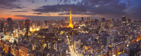 Panorama of the skyline of Tokyo, Japan with the Tokyo Tower photographed at dusk.