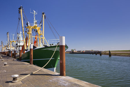 sea fishing: Trawlers in the harbour of Oudeschild on the island of Texel in The Netherlands on a sunny day.