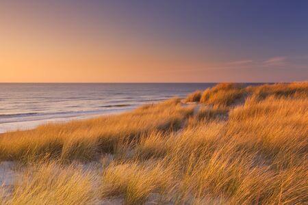 duna: altas dunas con hierba de dunas y una amplia playa de abajo. Fotografiado al atardecer en la isla de Texel en los Países Bajos.