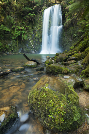 temperate: A beautiful temperate rainforest with waterfalls. The Beauchamp Falls in the Great Otway National Park, Victoria, Australia. Stock Photo