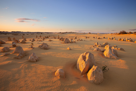 The Pinnacles Desert in the Nambung National Park, Western Australia. In the light of a setting sun.
