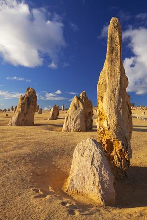 western australia: The Pinnacles Desert in the Nambung National Park, Western Australia.