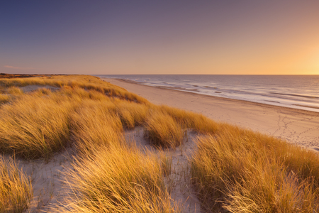 noord: Tall dunes with dune grass and a wide beach below. Photographed at sunset on the island of Texel in The Netherlands.