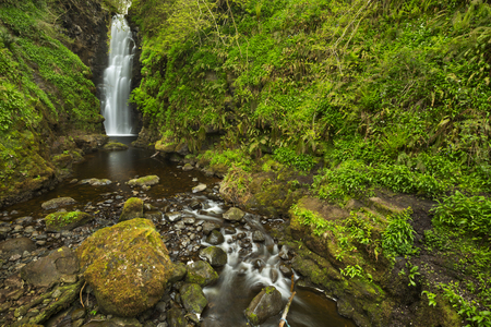 cranny: The Cranny Falls near Carnlough in Northern Ireland.