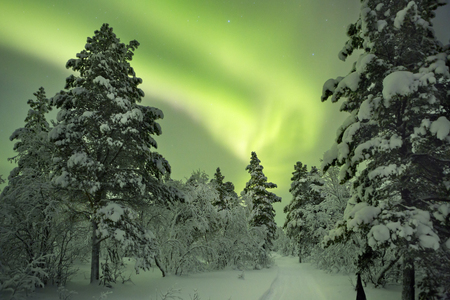Spectacular aurora borealis (northern lights) over a path through winter landscape in Finnish Lapland. Stok Fotoğraf
