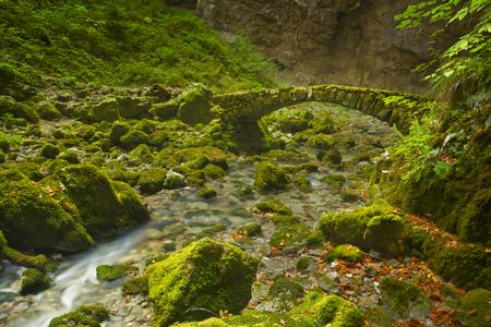 A stone bridge in a lush valley Rakov Skocjan in Slovenia.