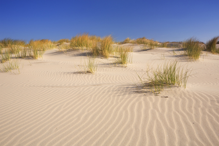 Sand dunes with ripples on the Dutch island of Terschelling on a bright and sunny day.