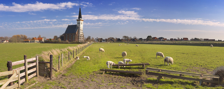 The church of Den Hoorn on the island of Texel in The Netherlands on a sunny day. A field with sheep and little lambs in the front. Stockfoto