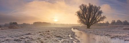 A foggy sunrise over a frozen landscape just north of Amsterdam in The Netherlands. Reklamní fotografie