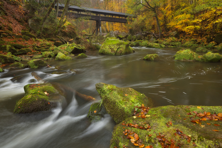 A covered wooden bridge over a river in an autumn forest near Irrel, Germany.