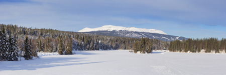 Trysilfjellet, the mountain of Trysil in Norway, on a sunny day in winter.