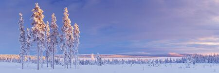 Wintry landscape in Finnish Lapland, photographed at sunset.