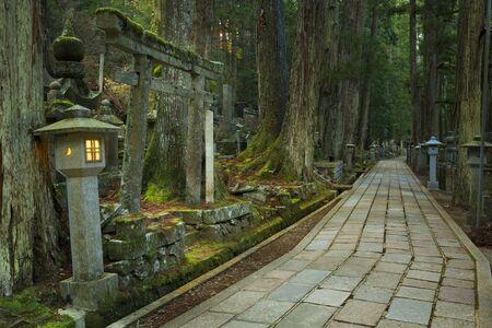 Un camino a través del antiguo cementerio budista Okunoin en Koyasan (é «˜é ‡ Žå ± dangerous), Japón. Foto de archivo