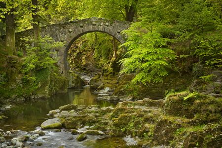 Foley's Bridge over the Shimna River in Tollymore Forest Park, Northern Ireland.