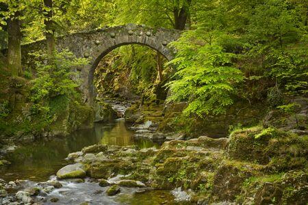 Foleys Brücke über den Shimna River im Tollymore Forest Park, Nordirland.